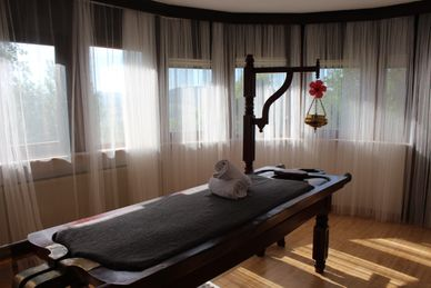 Ayurveda Cleansing Treatment